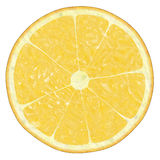 Lemon. Texture on white,  suits for duplication of the background, illustration Stock Image