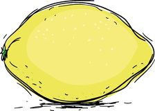 Lemon. Yellow juicy lemon,vector illustration Stock Photography