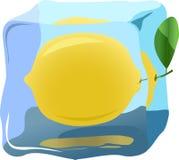 Lemon. Fresh lemon frozen in ice, illustrations vector Royalty Free Stock Images