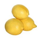 Lemon. Three lemons on a white background Stock Photography