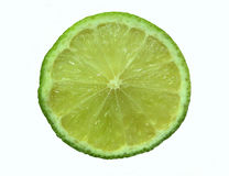 Lemon. Slice royalty free stock images