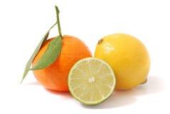 Lemon royalty free stock photography