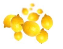 Lemon. Isolated on white background royalty free stock photos
