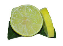THE LEMON Stock Photography