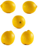 Lemon from all sides. On white background Royalty Free Stock Photo
