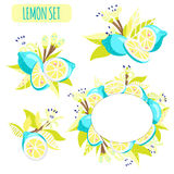 Lemon arrangement set. Set with frame and arrangement of lemons, leaves and flowers in bright unusual colors. Vector illustration Stock Photo