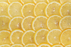 Lemon background Royalty Free Stock Photos