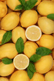 Lemon background Royalty Free Stock Images