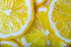 Lemon background Royalty Free Stock Photography