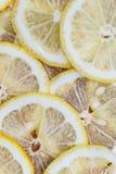 Lemon background Stock Image