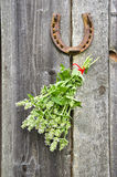 Lemon-balm healthy herbs and rusty horseshoe Stock Image