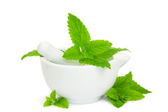 Lemon balm leaves with pestle and mortar. Used to crush the leaves for herbal and medicinal use and as a flavouring in cooking Royalty Free Stock Image