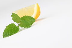 Lemon balm and lemon Royalty Free Stock Photo