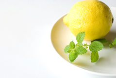 Lemon balm and Lemon Stock Photo