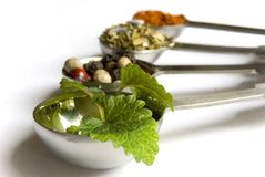 Lemon balm on measure spoon Stock Photo