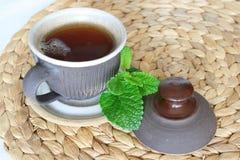 Lemon balm - Melissa officinalis. Medicinal herb,Tea stock images