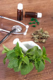 Lemon balm in mortar, stethoscope and medical capsules, choice between pills and alternative medicine Royalty Free Stock Images