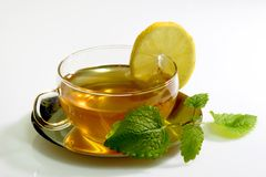 Lemon Balm Tea. In a glass cup with garnish on light background Royalty Free Stock Image