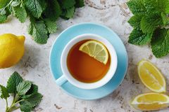 Lemon balm tea with honey. Cup of hot honey lemon balm tea. Lemon balm is a herb that belongs to the mint family and is known for its medicinal benefits stock photos