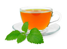 Lemon balm tea Royalty Free Stock Images