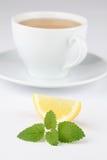Lemon balm tea with lemon Stock Image