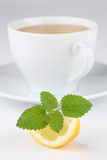 Lemon balm tea with lemon Royalty Free Stock Images