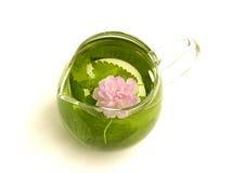Lemon balm tea Stock Photo