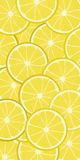 Lemon banner. Seamless vector background pattern with lemon Royalty Free Stock Images