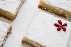 Lemon Bars on White Tray with Red Flower Accent Stock Images