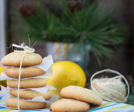Lemon biscuits. Christmas composition Stock Photo
