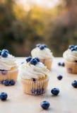 Lemon Blueberry Cupcake Royalty Free Stock Images