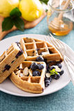 Lemon blueberry waffles with berries Royalty Free Stock Photos