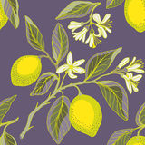 Lemon branches seamless pattern Royalty Free Stock Photo