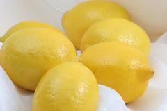 Lemon bunch. Lemons on silk stock images