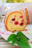 Lemon and Caraway Seed Bundt Cake with Raspberries Stock Image