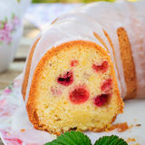 Lemon and Caraway Seed Bundt Cake with Raspberries Stock Photography