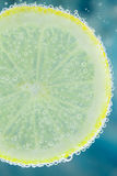Lemon in carbonated water Stock Images