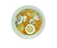 Lemon Chicken Orzo Soup Royalty Free Stock Photography