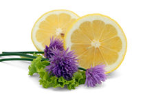 Lemon & Chives Royalty Free Stock Photos