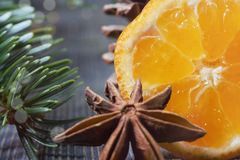 Lemon, cinnamon and badian next to pine branch. Piece of lemon, cinnamon and badian star anise next to pine branch and conifer cone, sitting on wooden table royalty free stock photos
