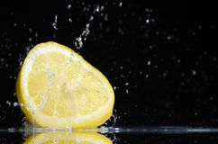 Lemon (Citron) Royalty Free Stock Image
