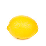 lemon or citron citrus fruit Stock Image
