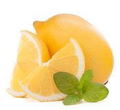 Lemon or citron citrus fruit Royalty Free Stock Image