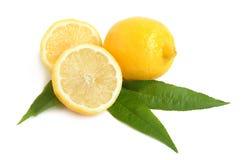 Lemon citrus Royalty Free Stock Photos