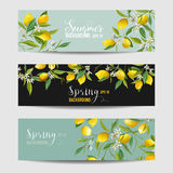 Lemon Citrus Floral Banners and Tags Set. In vector Royalty Free Stock Photography