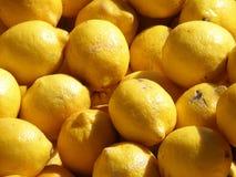 Lemon Citrus Fruit. Ripe lemons in a big pile Royalty Free Stock Photos