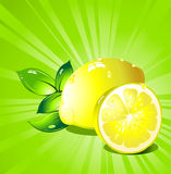 Lemon  citrus fruit. Vector. Stock Photography