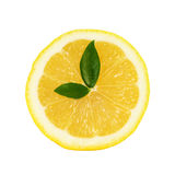 Lemon clock Stock Image