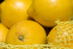 Lemon - close up Stock Photos
