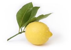 Lemon close-up Stock Photos